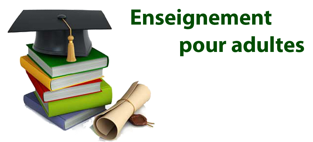 enseignement adultes